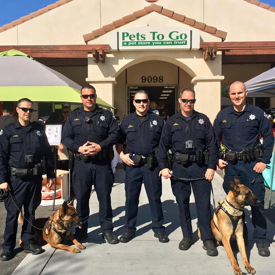 Pets to go east fun walk and birthday bash is this saturday pets pets to go east fun walk and birthday bash is this saturday solutioingenieria Images
